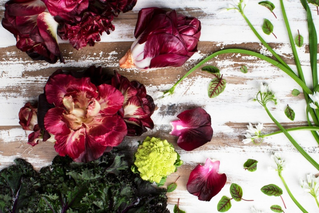 Only the rosa di Gorizia variety, a chicory with ancient roots in the Friuli-Venezia Giulia region and imported by Baldor Specialty Foods, is spared the heat in my kitchen. Credit: Sebastian Arguello, copyright 2016 copyright Baldor Specialty Foods